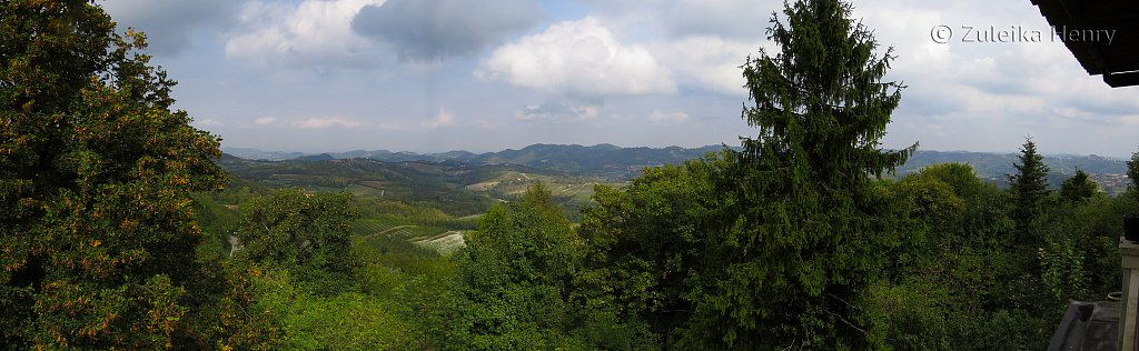 View from Il Gelsemino Restaurant, Piedmont, Italy