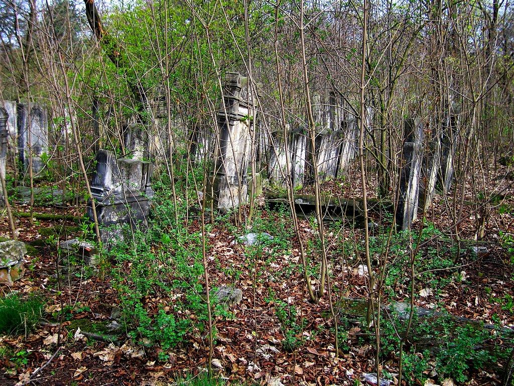 Jewish Cemetery, Tomaszow Mazowiecki