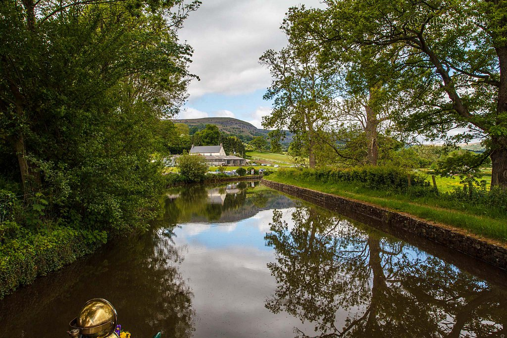 69-Zuleika-Henry-Brecon-and-Abergavenny-Canal-50-shades-of-green.jpg