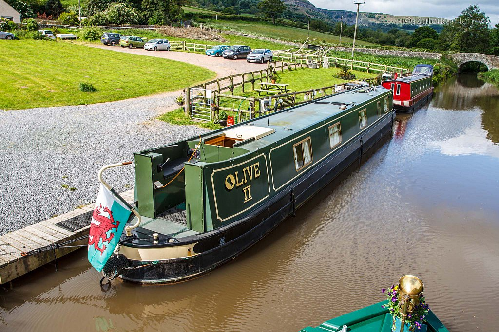 76-Zuleika-Henry-Brecon-and-Abergavenny-Canal-50-shades-of-green.jpg