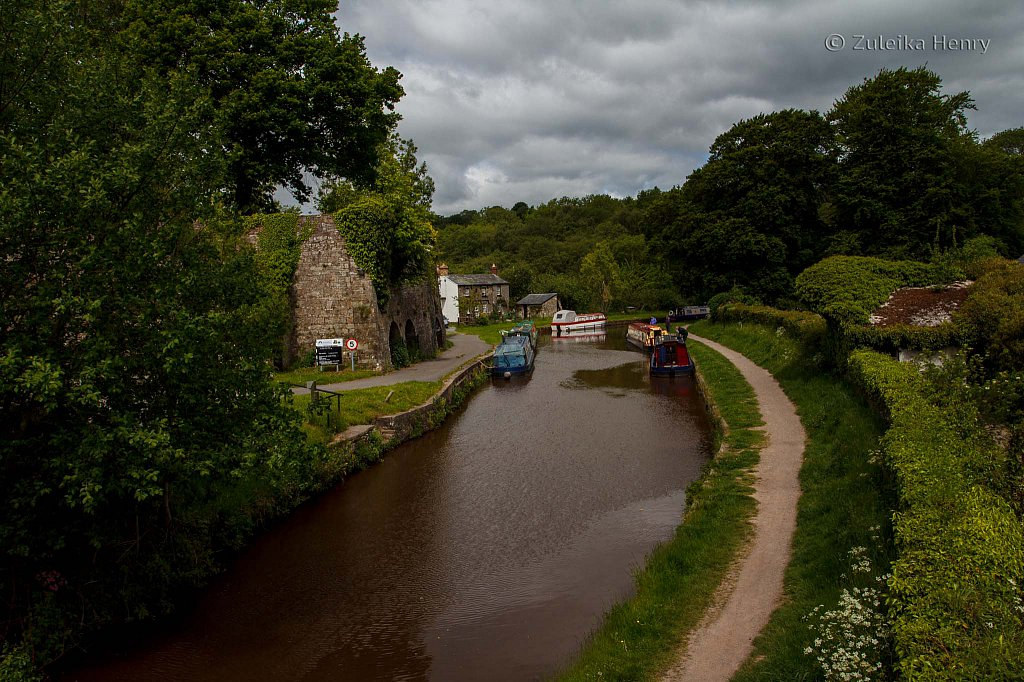 132-Zuleika-Henry-Brecon-and-Abergavenny-Canal-50-shades-of-green.jpg