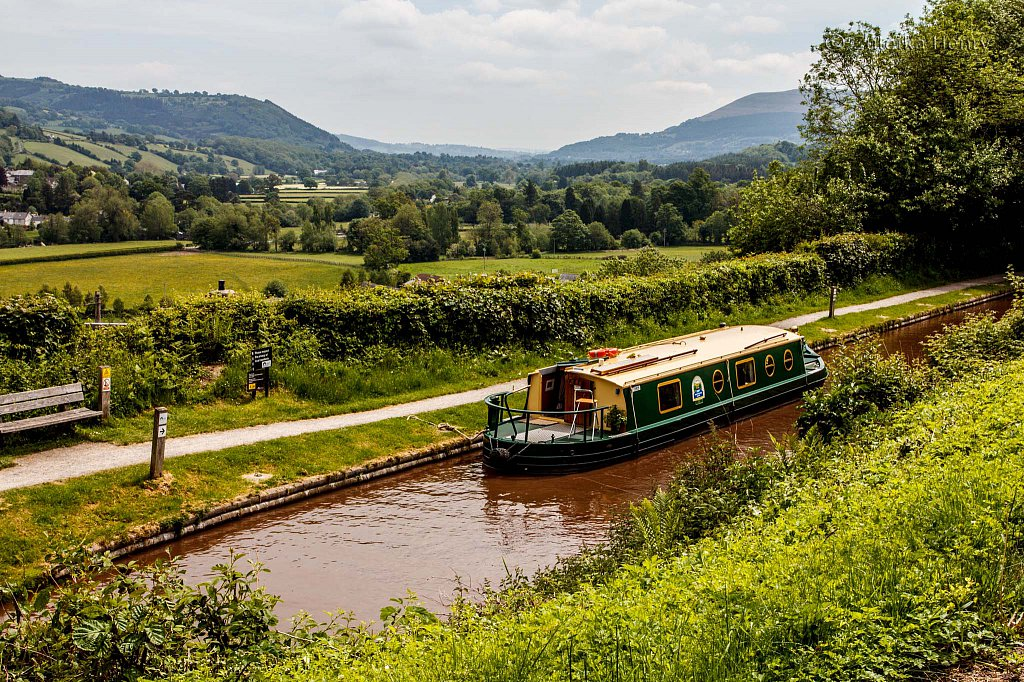 378-Zuleika-Henry-Brecon-and-Abergavenny-Canal-50-shades-of-green.jpg