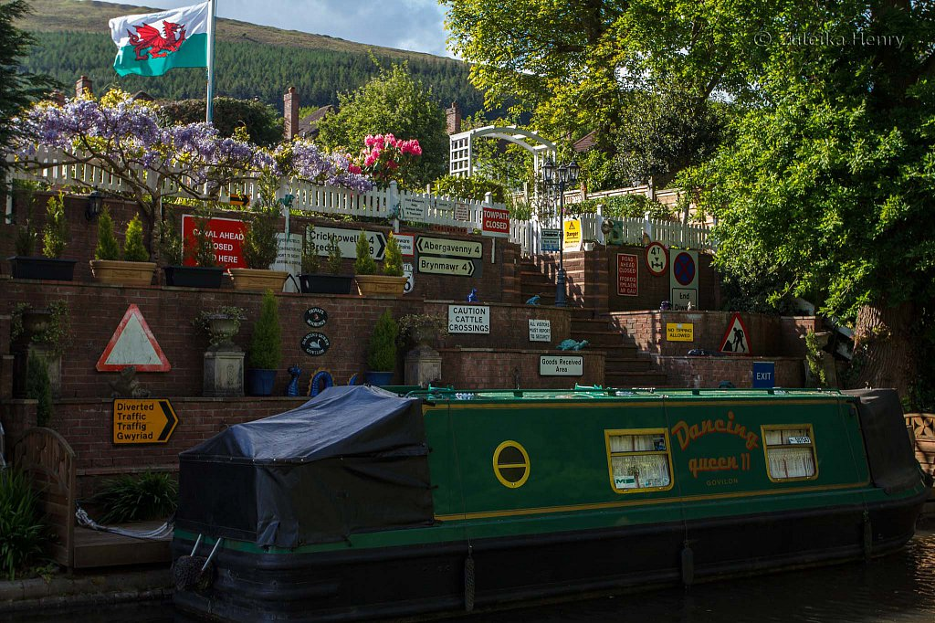 447-Zuleika-Henry-Brecon-and-Abergavenny-Canal-50-shades-of-green.jpg