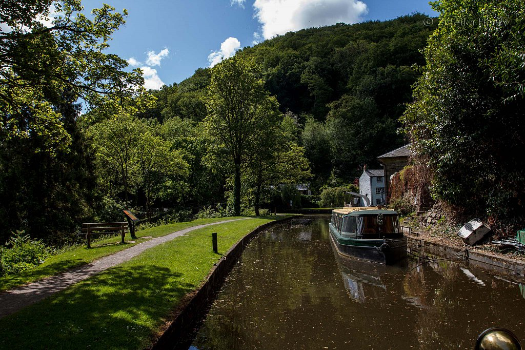 494-Zuleika-Henry-Brecon-and-Abergavenny-Canal-50-shades-of-green.jpg