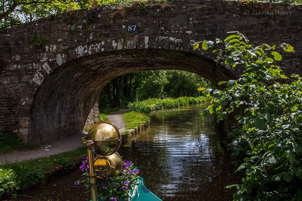 551-Zuleika-Henry-Brecon-and-Abergavenny-Canal-50-shades-of-green.jpg