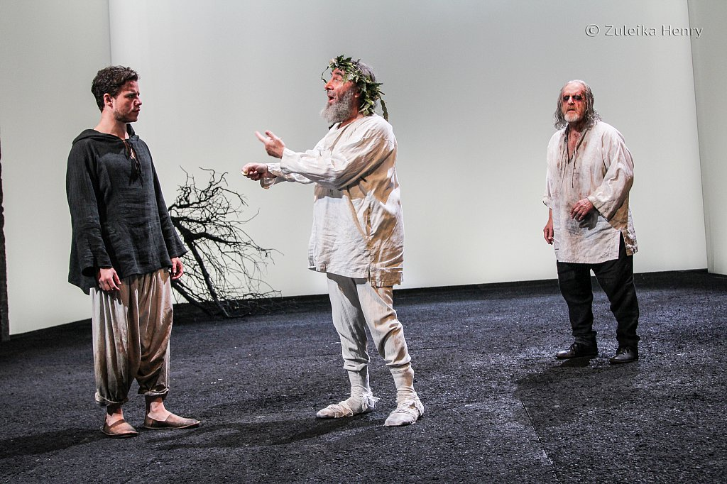 Oliver Johstone as Edgar, Antony Sher as Lear and David Troughton as Gloucester
