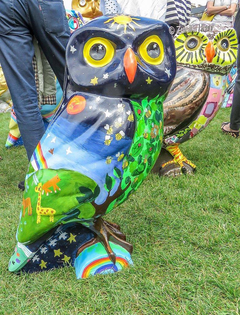 The-Owls-of-Bath-2018-26.jpg