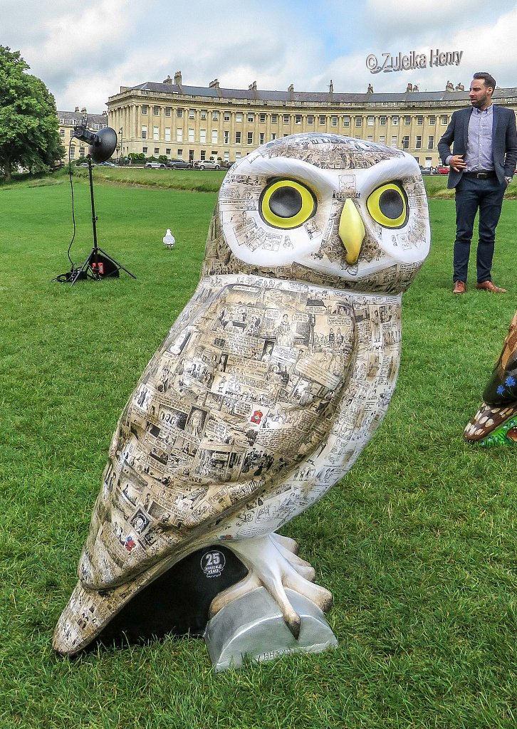 The-Owls-of-Bath-2018-28.jpg