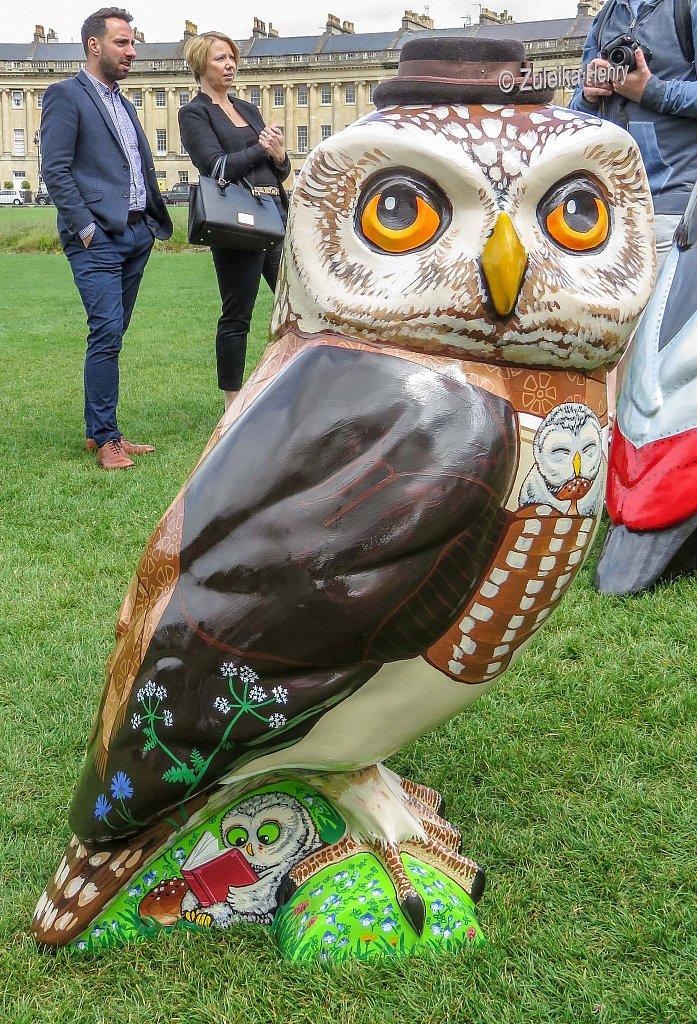 The-Owls-of-Bath-2018-29.jpg