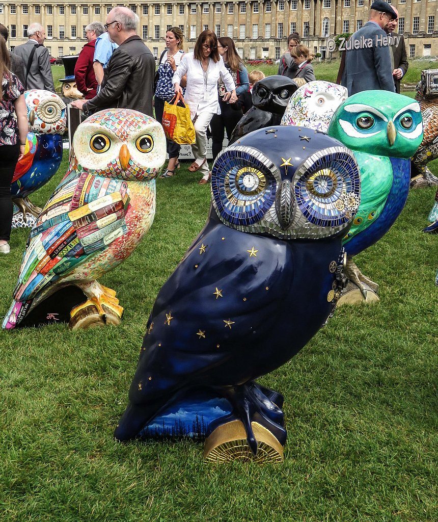The-Owls-of-Bath-2018-21.jpg