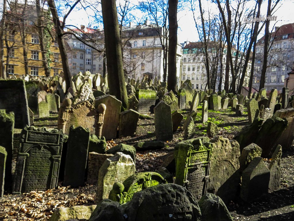 Prague-Zuleika-Henry-20140214-0048.jpg